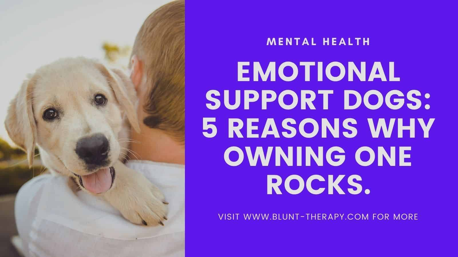 emotional support animal featured image