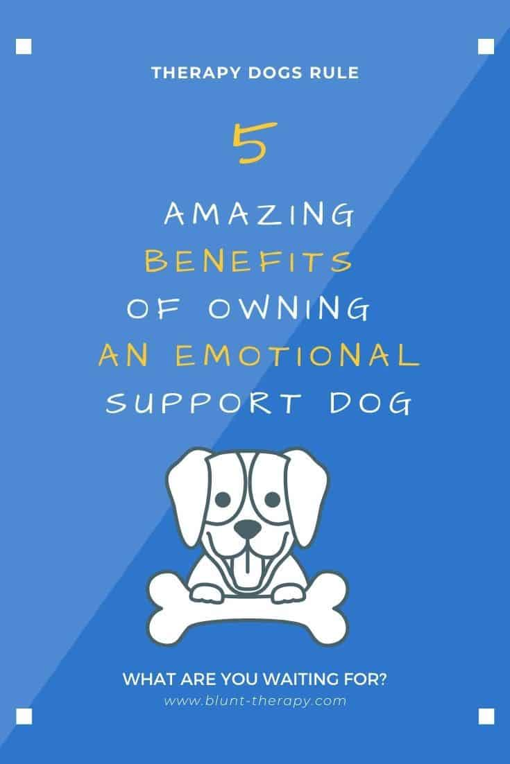 5 Amazing Benefits of Owning An Emotional Support DOG (2)