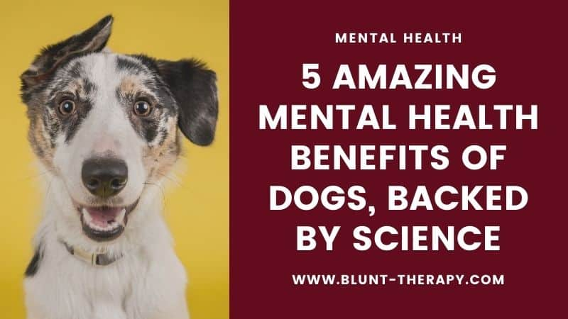 5 Amazing Mental Health Benefits of Dogs, Backed By Science