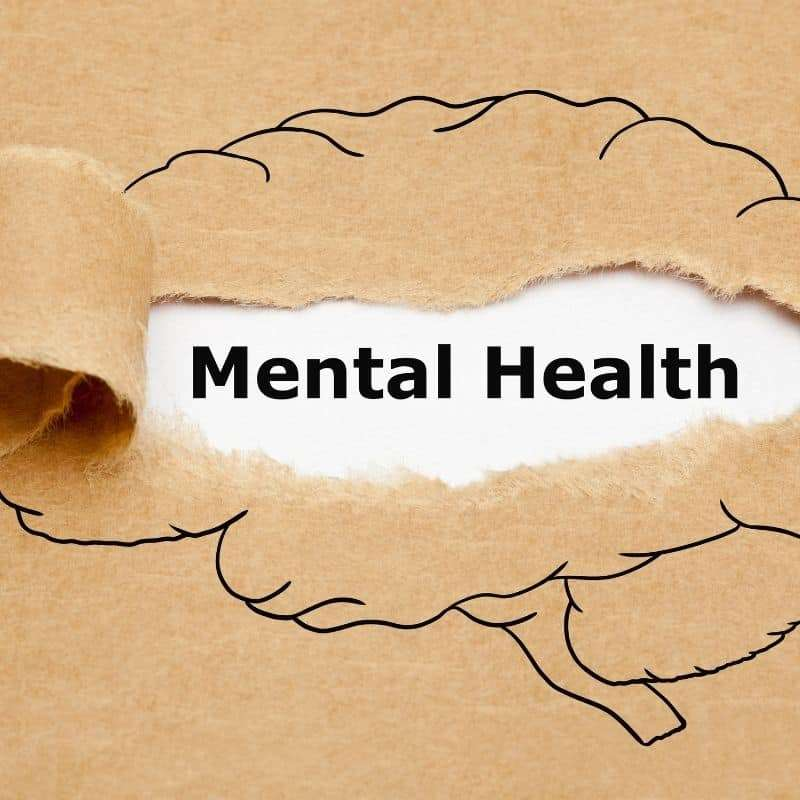 mental health products and services